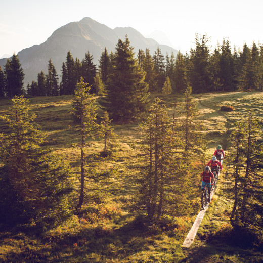 Saalbach Sommer Bike Enduro Downhill