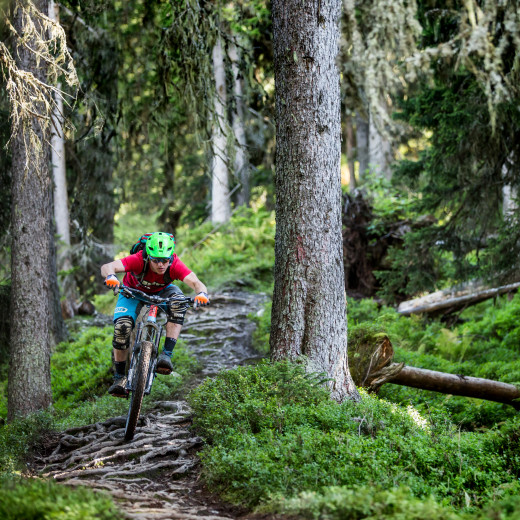 Saalbach Sommer Bike Enduro Downhill Wurzel Trail
