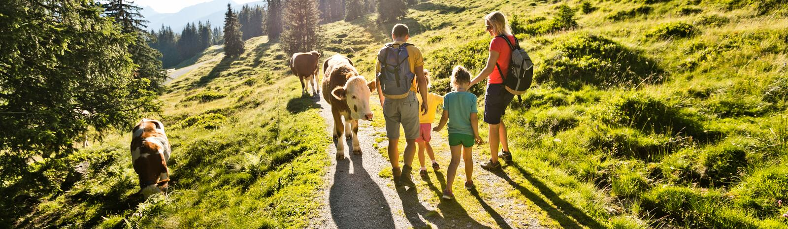 family on the mountain | © saalbach.com, Mirja Geh
