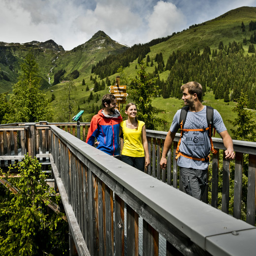 Hiking on the treetop walk Baumzipfelweg | © Mirja Geh