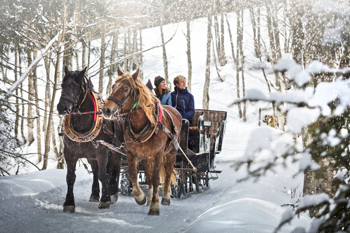 horse drawn sleigh rides infrastructure in saalbach