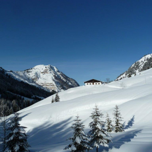 The Martlingalm between Wirtsalm and Spielberghaus | © Privat
