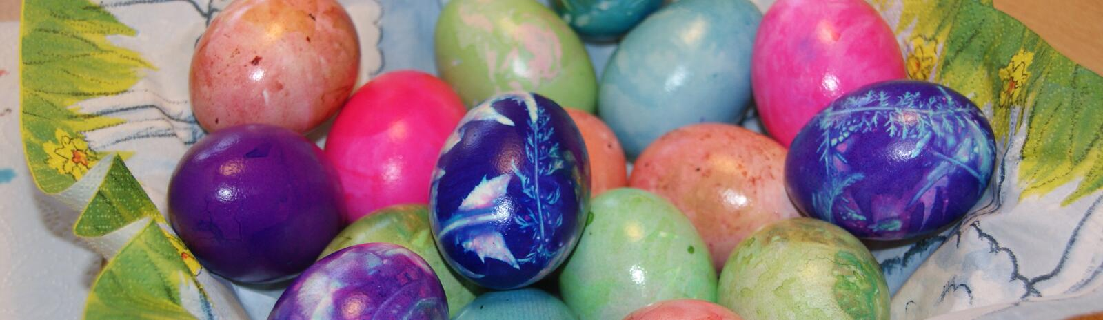 Colorful Easter eggs - naturally colored | © Bianca Passrugger-Lörgetbohrer