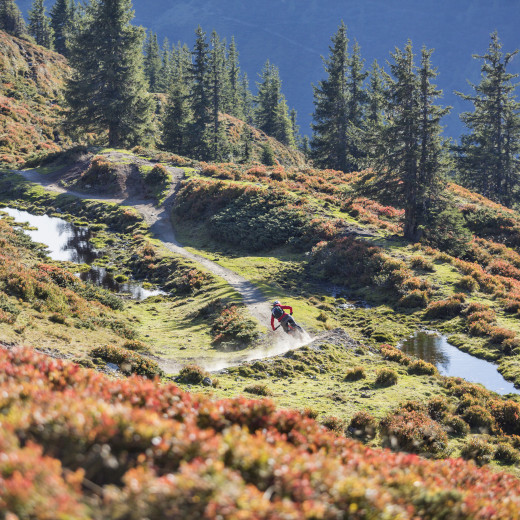 Hacklbergtrail a pure Freeride delight | © Heiko Mandl
