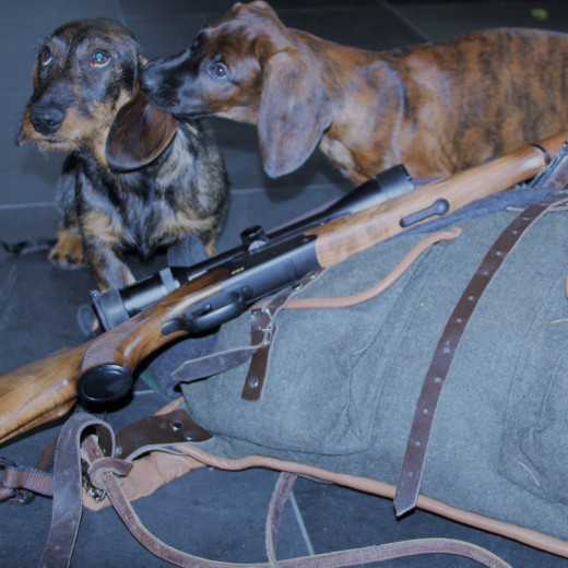 The dogs Viggerl and Django are ready | © Michaela Mitterer