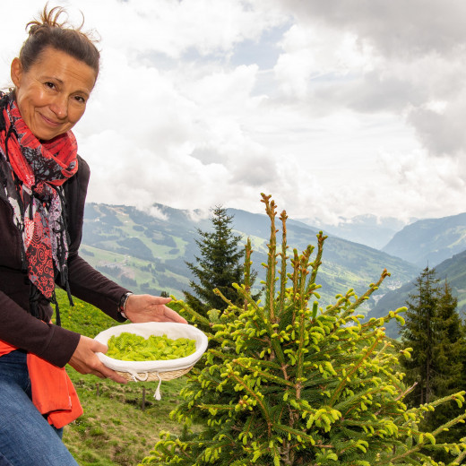 Tanja collects the sprouts  | © Edith Danzer