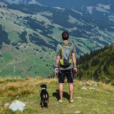 Beautiful views with dog. | © gehlebt.at